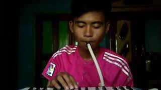 Download Shawn Mendes - Stitches (Pianika Cover) Video