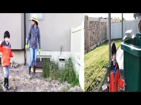 How To Clean Up Your Backyard Lot's Of Weeds In Spring Time.This is The Simple Way To Do It.