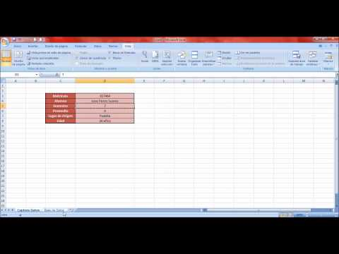 Tutorial Macros Excel: Base de Datos