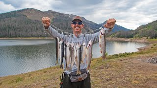 Download Fishing Mountain Lake for Food | Trout & Salmon Catch & Cook! Video