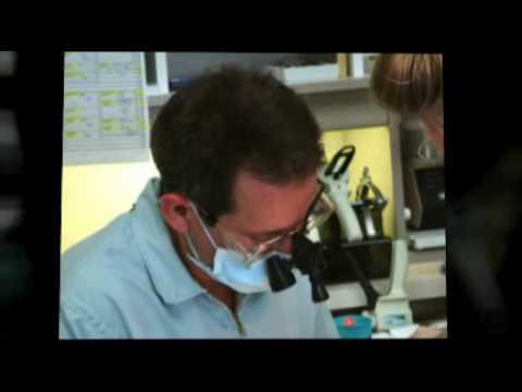 Ashford Dentist