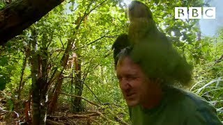 Shagged by a rare parrot | Last Chance To See - BBC
