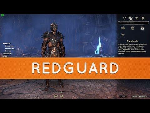 The Elder Scrolls Online: Races - Redguard