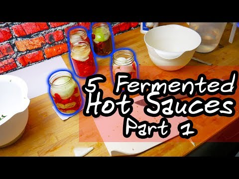 Fermenting some of the hottest peppers in the world! Part 1
