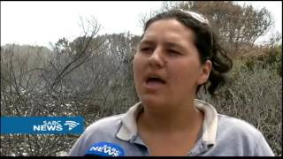 Nelson Mandela Bay experiences worst bush fire season