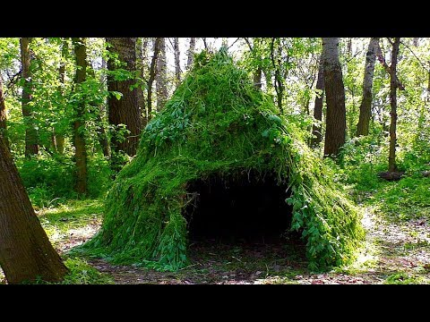 Primitive technology. how to build a wigwam in the forest.