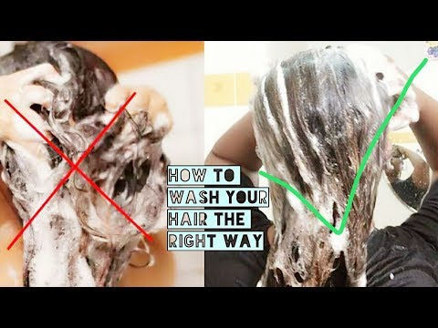 How to apply SHAMPOO and CONDITIONER for long hair | stop hair fall watch full demo