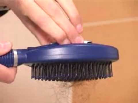 Self Cleaning Hair Brush - Developed by Q-Brush!
