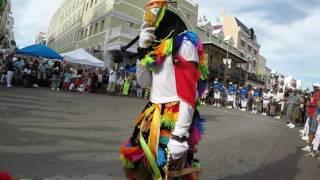 Gombeys- Bermuda Day 2017!
