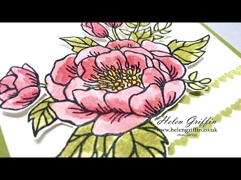 Tutorial - Watercolour Rose With Aqua Painter Brushes Or Blender Pens (Stampin'Up!)
