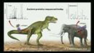 Lets Test Them: Evolution vs. Creationism