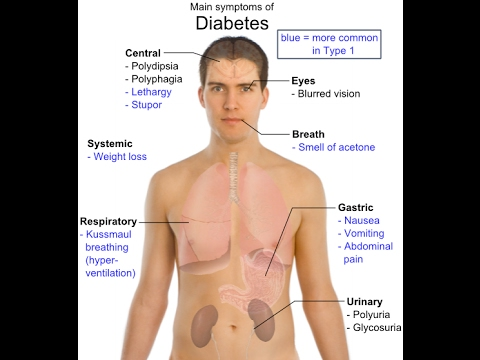 Health | Diabetes the symptoms of diabetes audio | Diabetes care