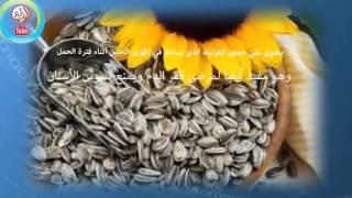 فوائد اللب السورى فى العناية بالصحة و المحافظة عليها  عجيب فعلا