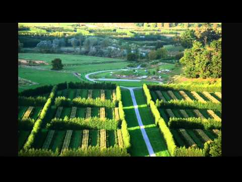 From landscape architecture to conservation agriculture | Thomas Woltz | TEDxCharlottesville