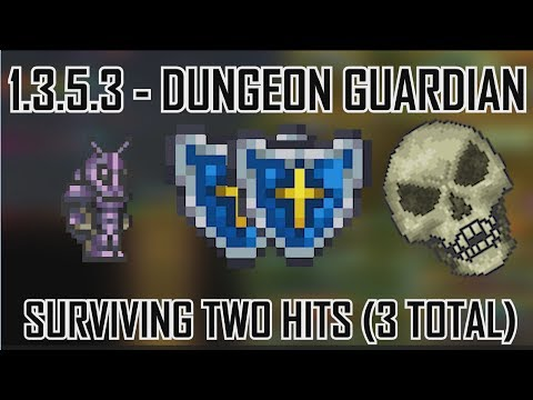 Surviving/Tanking 2 hits from the Dungeon Guardian! No Dodging, Singleplayer, 1.3.5.3 (ft SSQ - Seq)