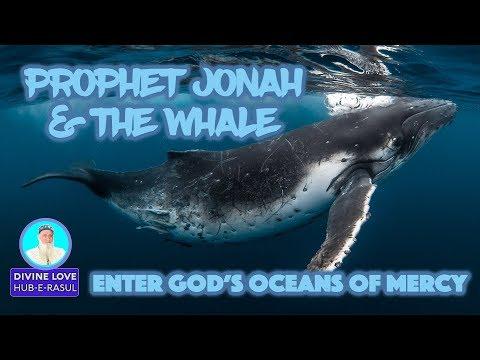 S1 E35   Like Jonah Enter God's Ocean of Mercy! ★ Divine Love  Hub E Rasul  ★