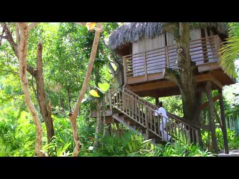Couples Resorts Negril Jamaica Official Video