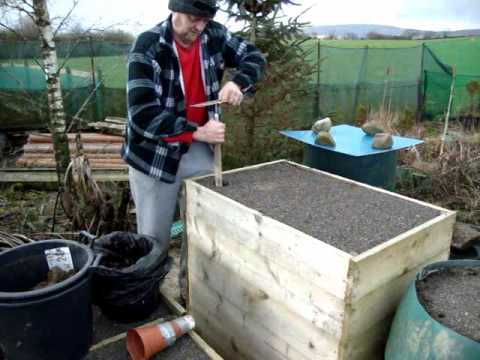 Allotment Diary : How to grow Giant Exhibition  Long Carrots & Parsnips