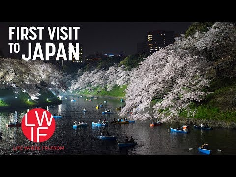 First Time Visiting Japan: Expectations vs. Reality