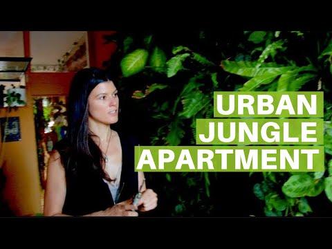 Summer Rayne Oakes' Urban Jungle Apartment