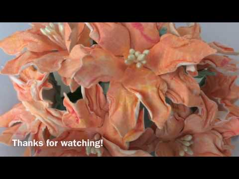CE Poinsettia's into Spring Flowers