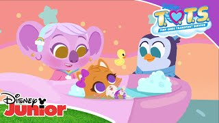 💓 The T.O.T.S. Lullaby | Disney Junior Lullabies | Disney Junior UK