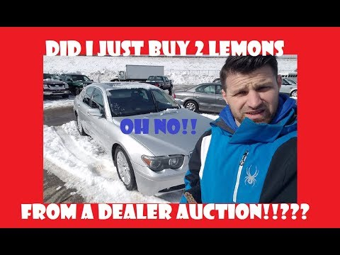 Did I just buy 2 Lemons from a Dealer Only Car Auction !!??