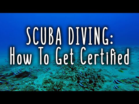 SCUBA Diving: How To Get Certified