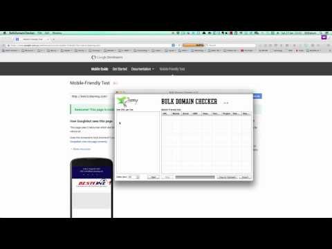 Bulk Domain Checker