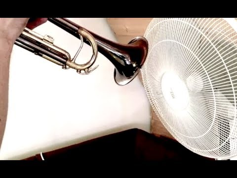 Ever played trumpet into a fan?