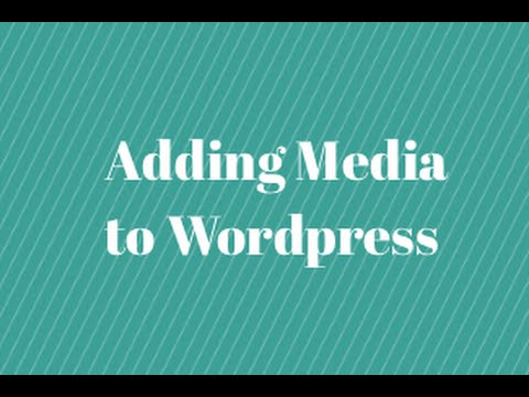 Adding Media in Wordpress - Quick Tutorial