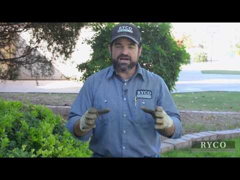 Sewer Line Inspection - How The Pros Do It
