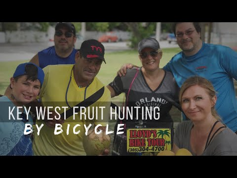 Key West Fruit Hunting with a Local Legend: Lloyd's Tropical Bike Tour