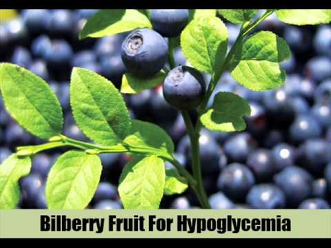 7 Natural Cures For Hypoglycemia