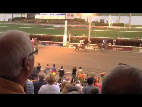 Florida Derby - The big race at Gulfstream Park