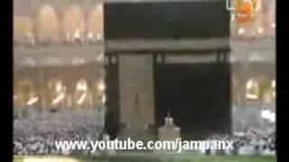 AJAIB ! - KUCING MENYENTUH KA
