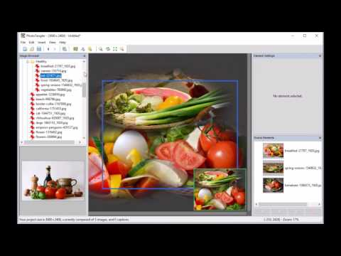 How to Make Stunning Photo Collages Using PhotoTangler