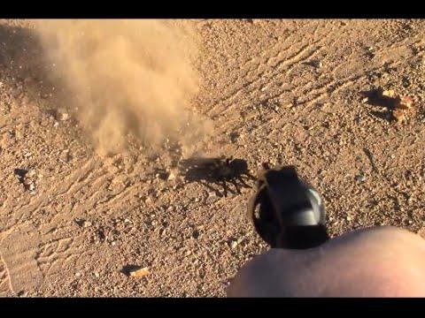 Revolver VS Giant Spider