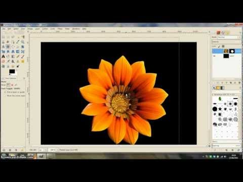 GIMP Tutorial - Using the paths tool to cut around an image