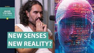 New Senses, New Reality?   Russell Brand & Neuroscientist David Eagleman