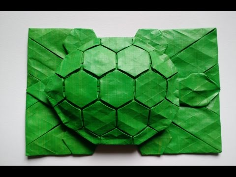 Tessellated Turtle (Melina Hermsen) - Time Lapse