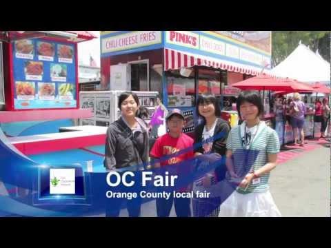 Study Abroad School Cultural Exchange Program