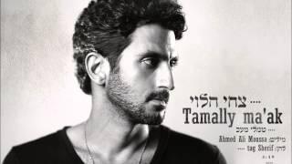 Tsahi Halevi- Tamaly maak/צחי הלוי-תמלי מעאכ