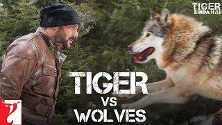 Tiger vs Wolves  - Promo | Tiger Zinda Hai | Salman Khan | Katrina Kaif | Ali Abbas Zafar