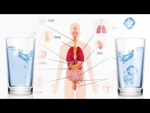Cold Water vs. Warm Water: One of Them is Damaging to Your Health