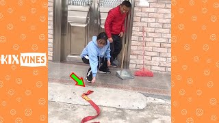 Funny videos 2021 ✦ Funny pranks try not to laugh challenge P187