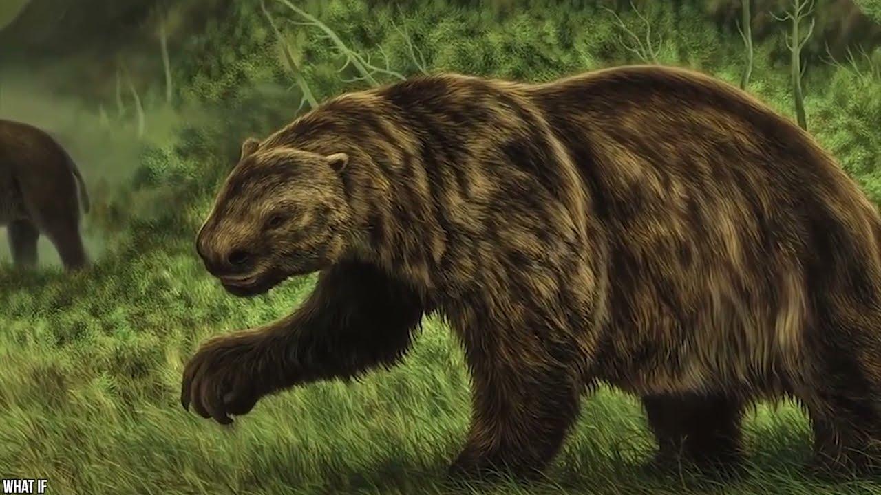 15 Animales Que Daban Más Miedo Que Los Dinosaurios