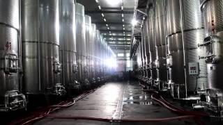 ირაკლი ღარიბაშვილმა ველისციხეში ახალი ღვინის ქარხანა გახსნა