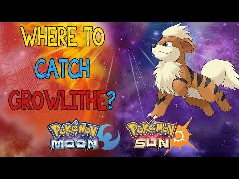 Where's Growlithe?! Pokemon Sun + Moon! WHERE TO CATCH GROWLITHE!