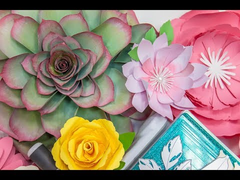 How to Create Step-by-Step Paper Flower Decor with David Tutera and Jen Long
